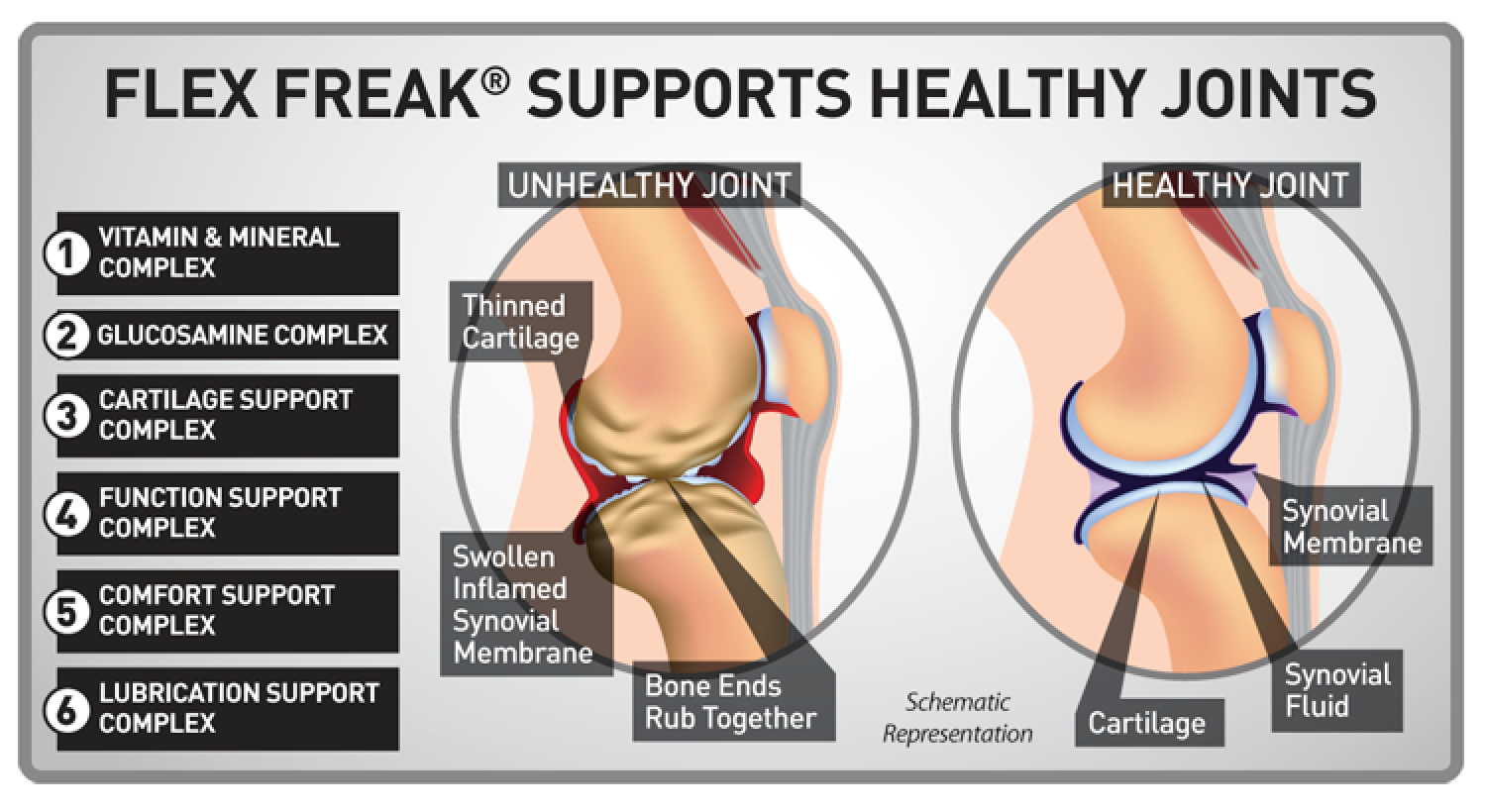 Supplements for Bones and Joints Infographic