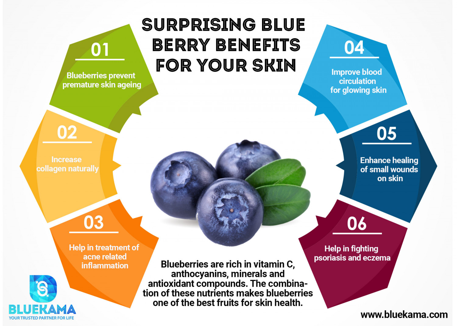 Surprising Blueberry Benefits for Your Skin Infographic