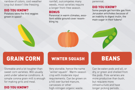 Survival Food for Growing Infographic Infographic