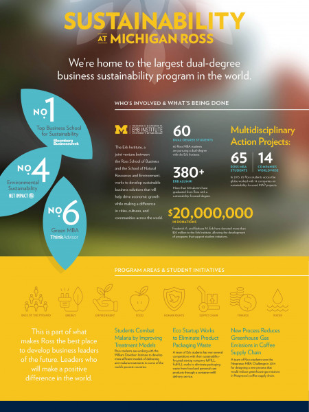 An introduction to the largest dual-degree business sustainability program in the world Infographic