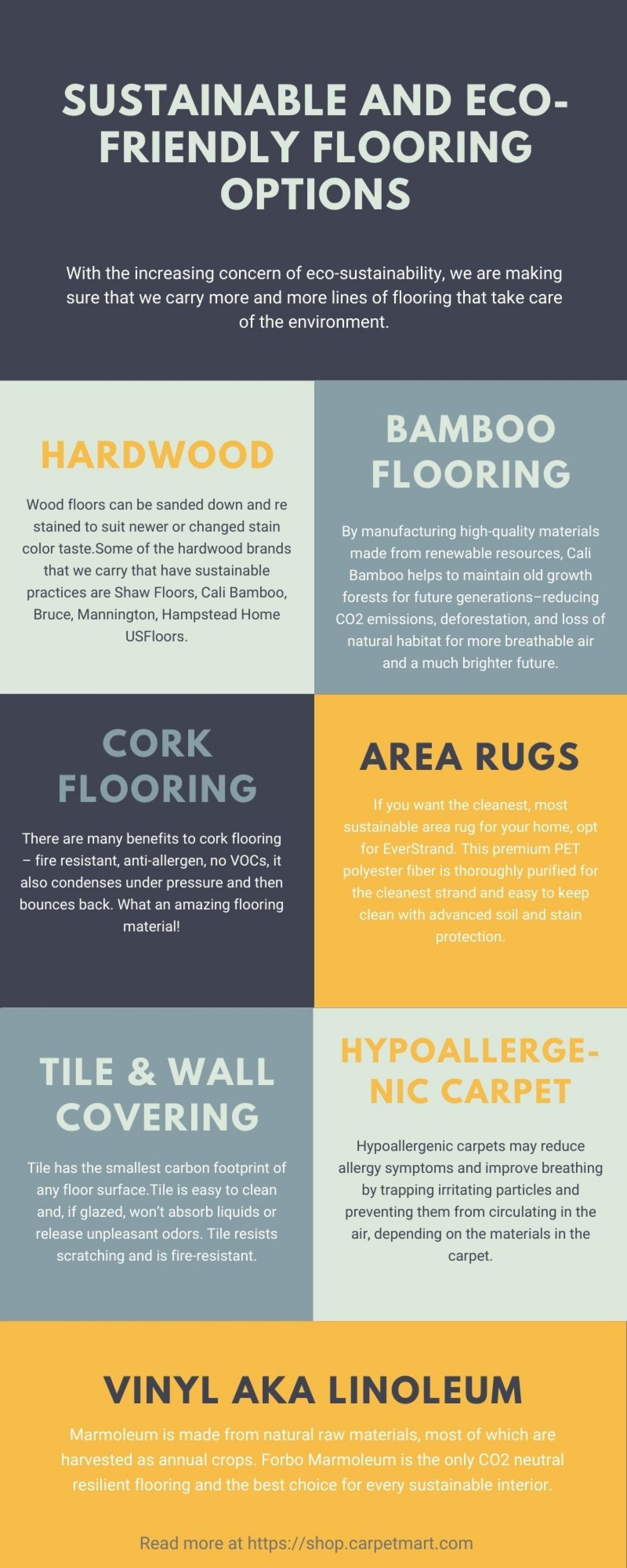 Sustainable and Eco-Friendly Flooring Options Infographic