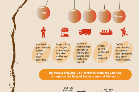 Sustainable Coffee. Your feel good moment.. Infographic