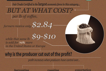 Sustainable coffee Infographic