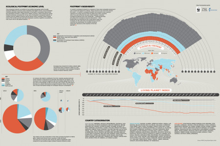 Sustainable Luxury: Ecological Footprint Infographic