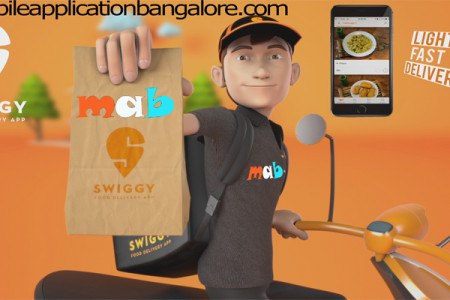 Swiggy Food Order Delivery Infographic