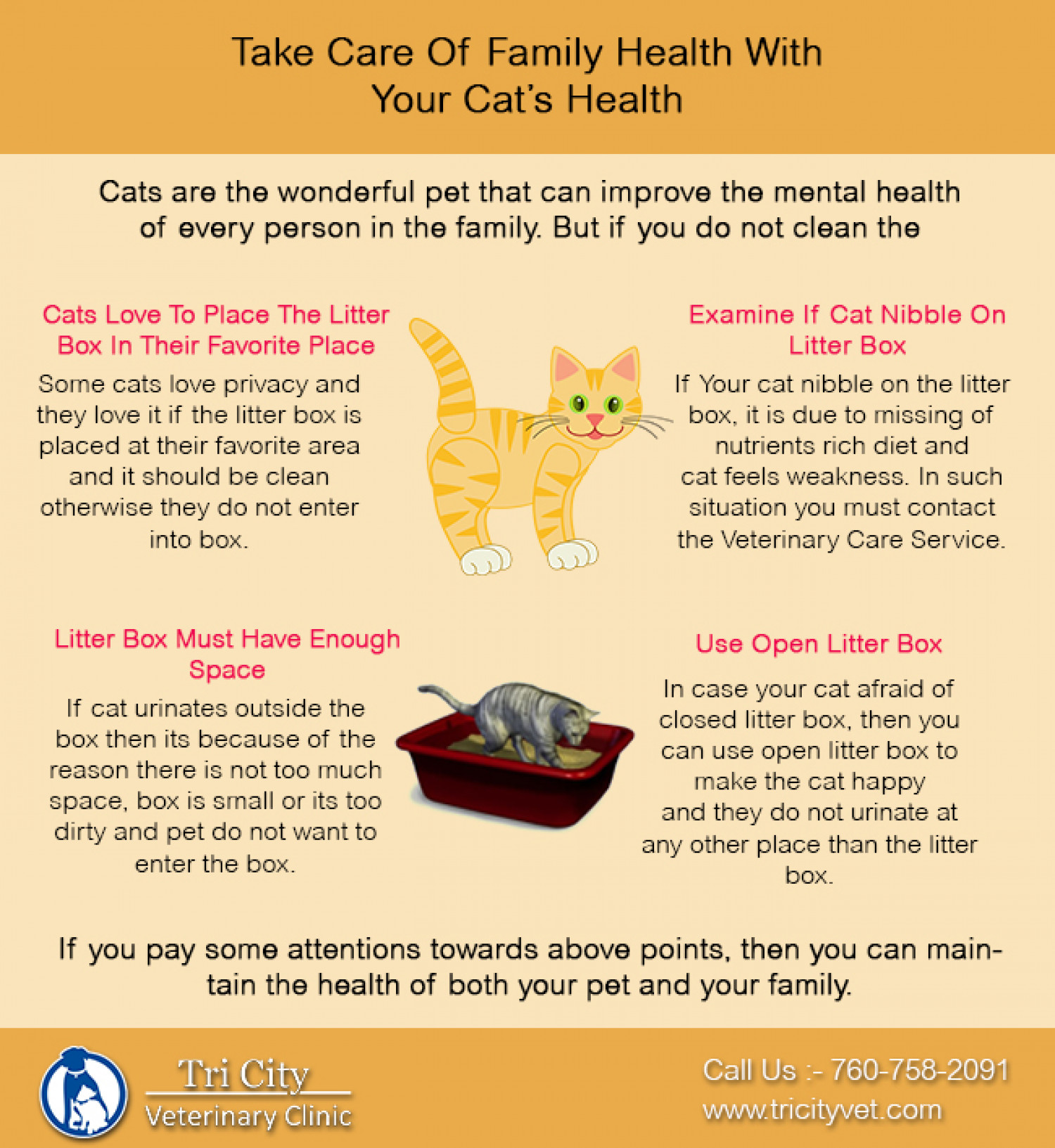 Take Care Of Family And Cat Health Infographic
