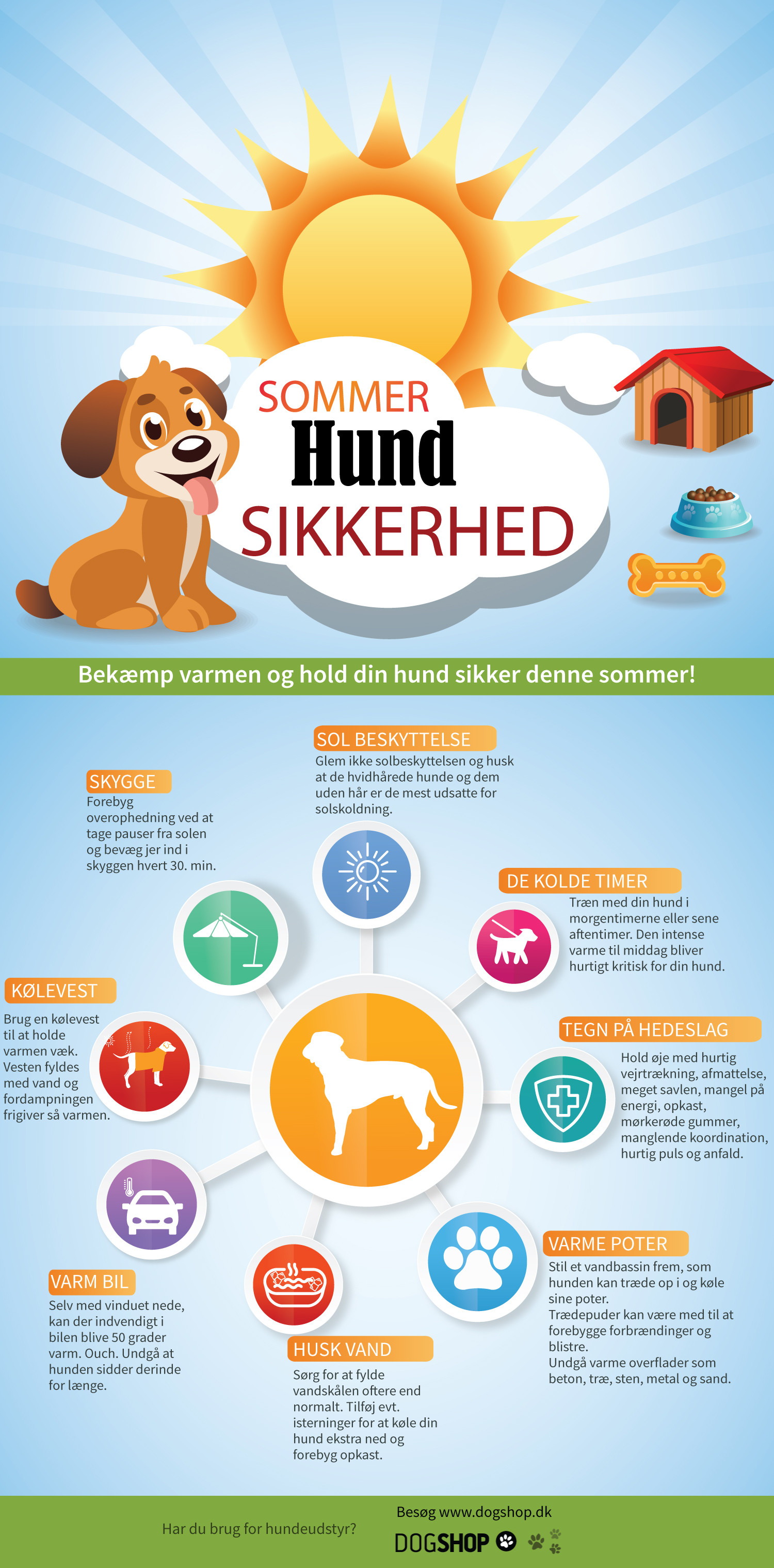 Taking care of your dog in the heat Infographic