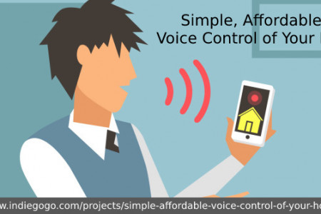 Talk to your house with these voice control security Infographic