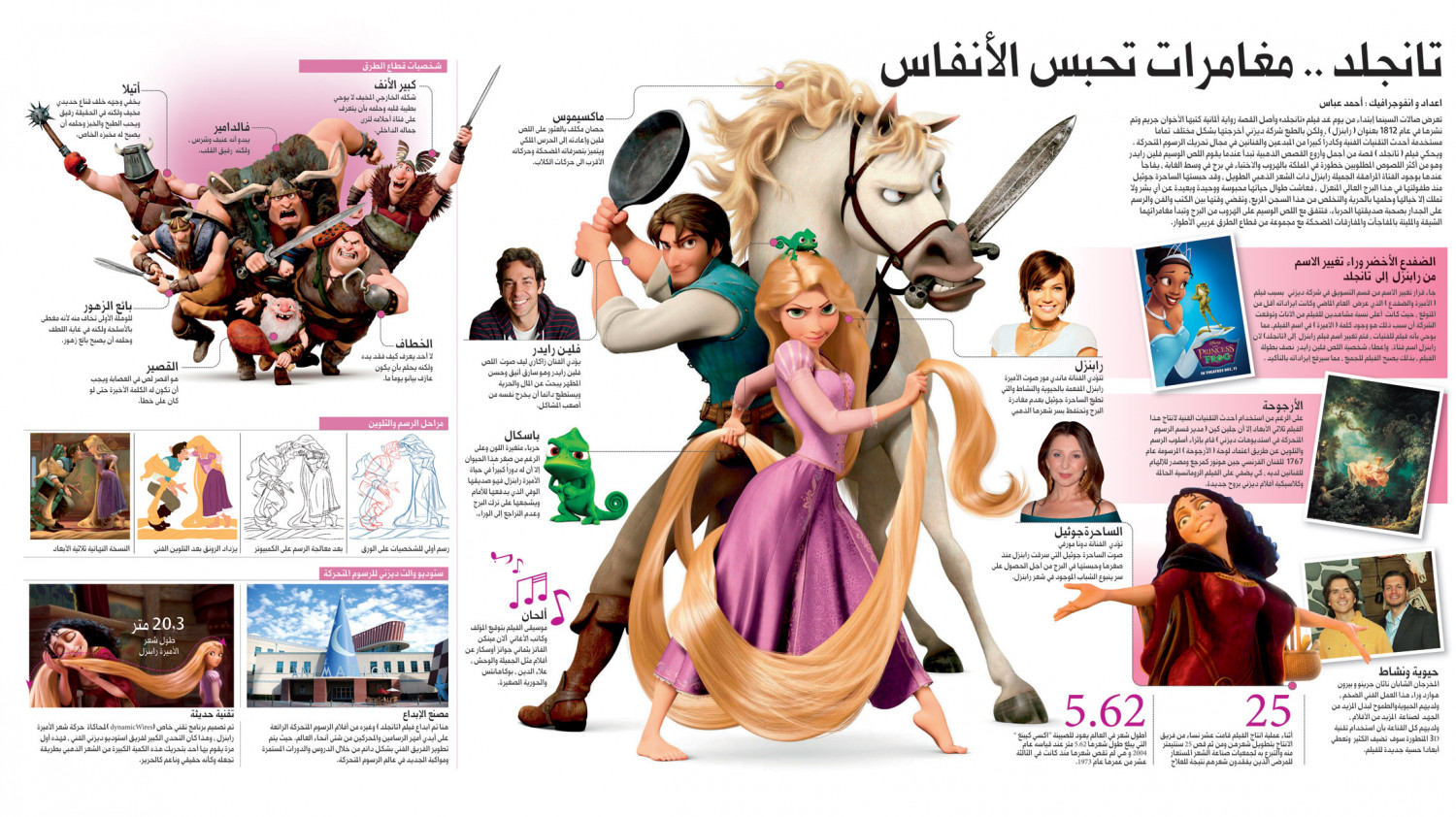 Tangled: The Movie Infographic