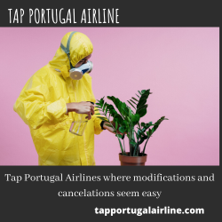Tap Portugal Airlines where modifications and cancelations seem easy | Visual.ly