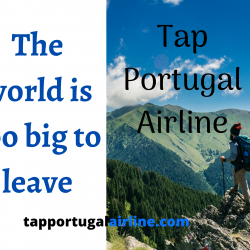 Tap Portugal makes life of travelers easy with exceptional deals  | Visual.ly
