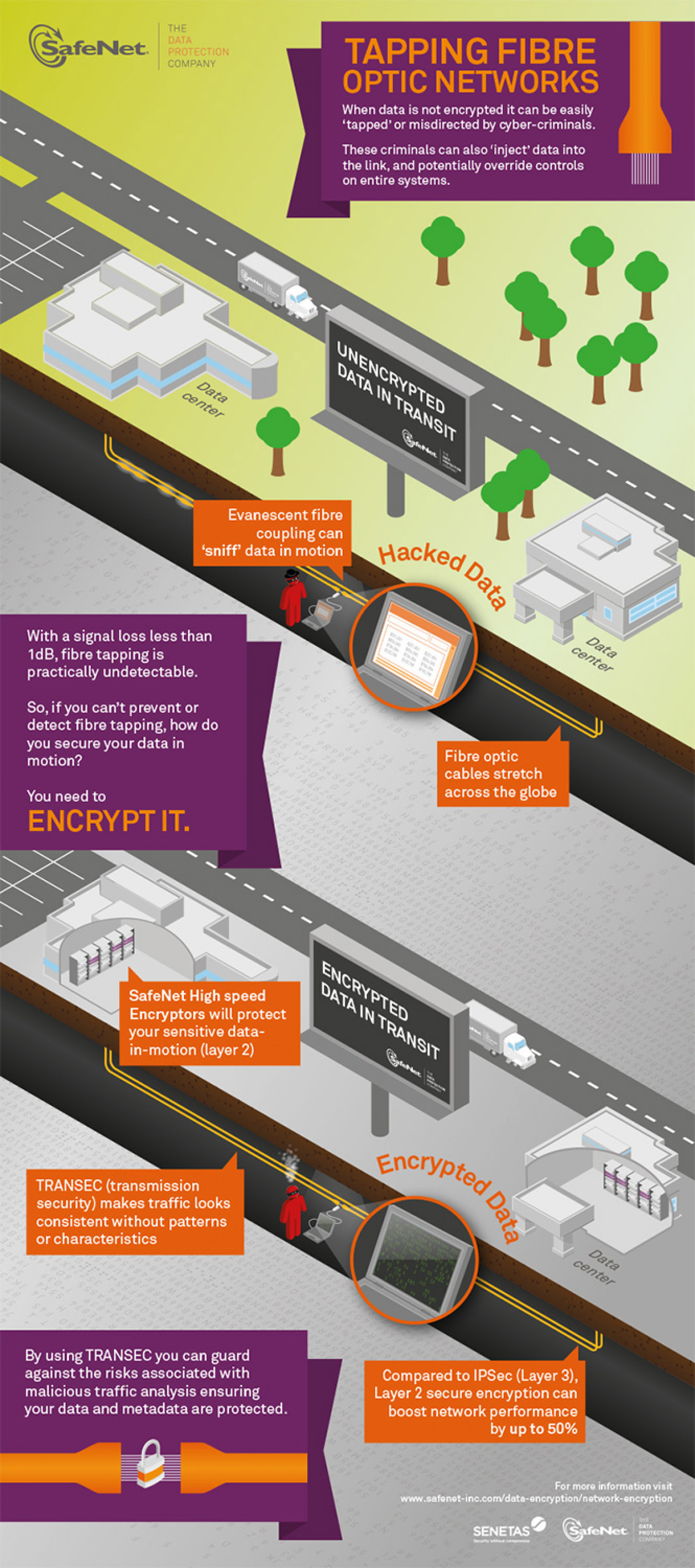 Tapping Fibre Optic Networks Infographic