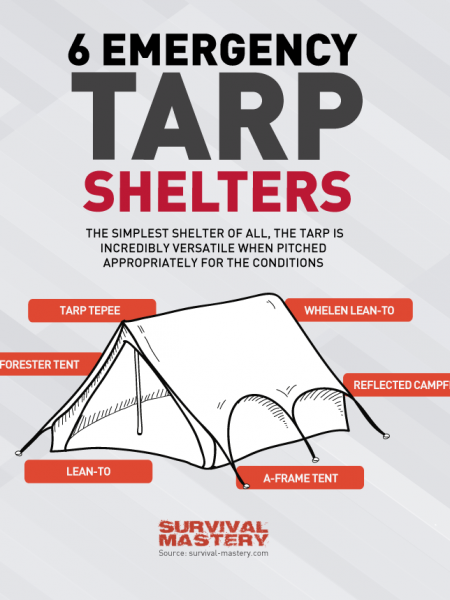 Emergency Tarp Shelters Infographic Infographic