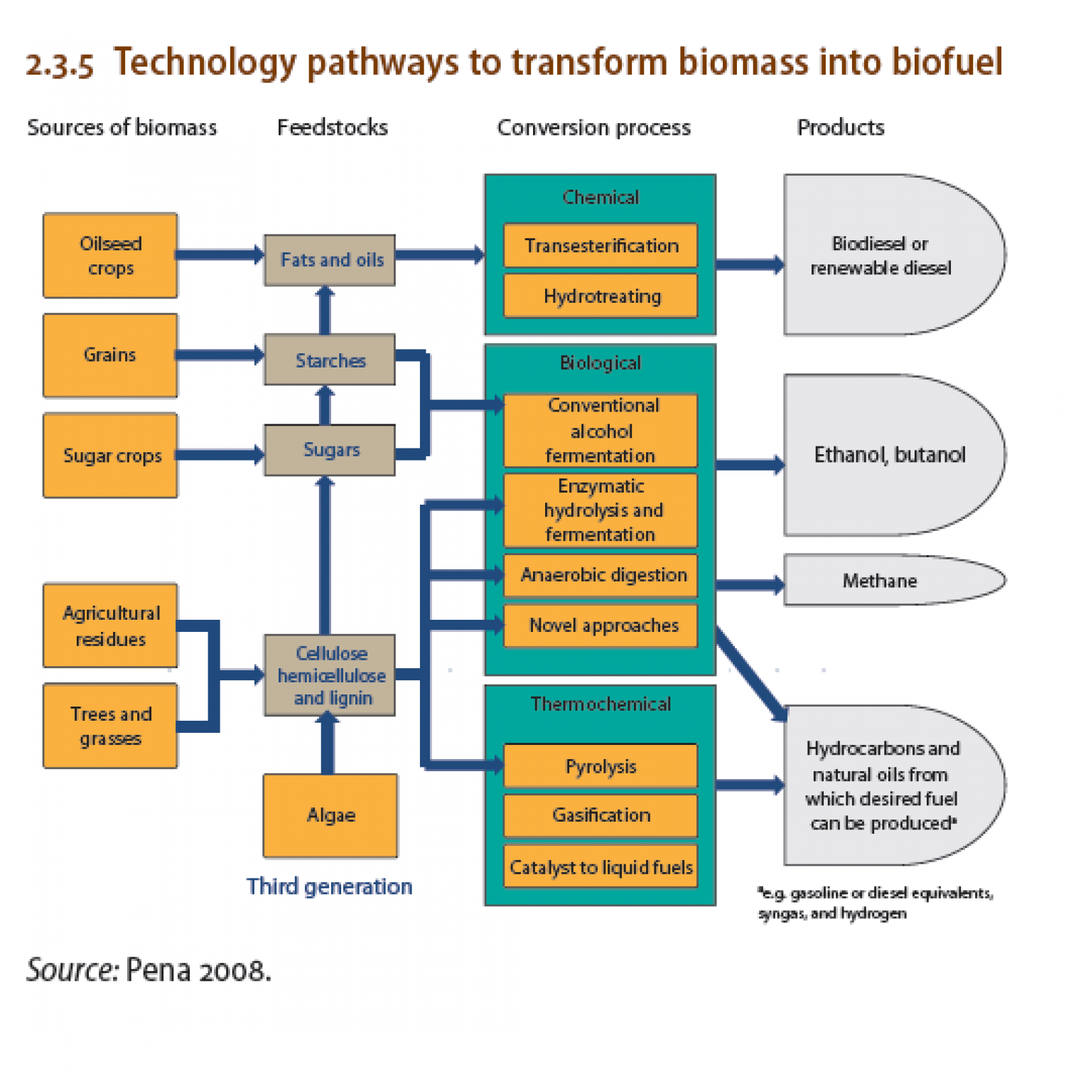 Technology pathways to transform biomass into biofuel infographic embed this visual