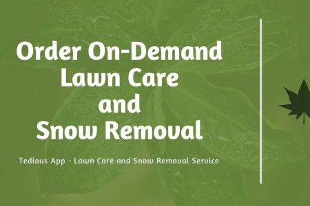 Tedious App: On-Demand Lawn Care and Snow Removal Services Infographic