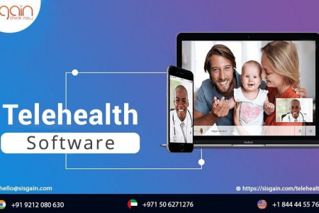 TELEHEALTH SOFTWARE SERVICES Infographic