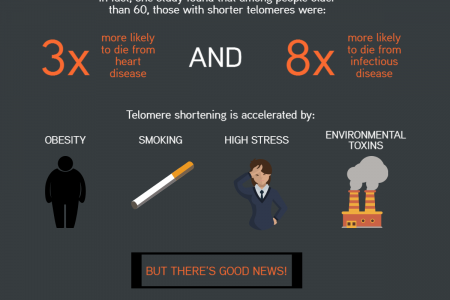 Telomeres - Your Biological Time Keepers Infographic