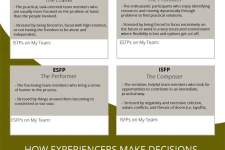 Temperaments: Which Ones Do You Have on Your Team? Infographic