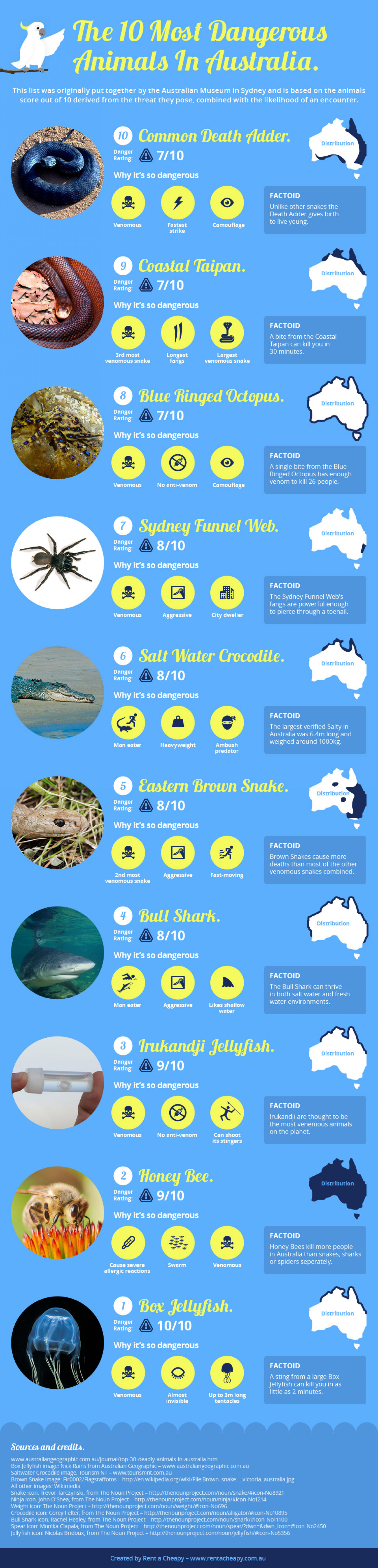 The 10 Most Dangerous Animals In Australia Infographic