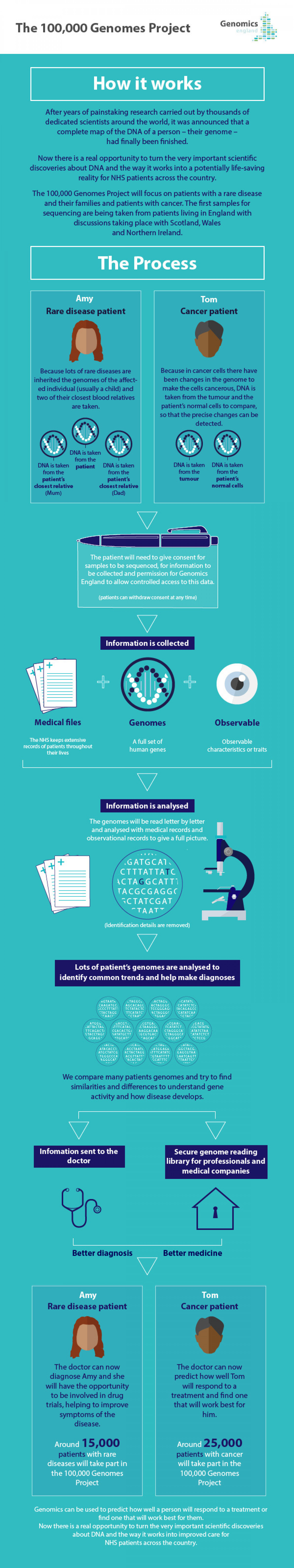 The 100K Genomes Project  -  The Process  Infographic