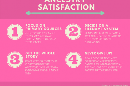 THE 4 STEPS TO ANCESTRY SATISFACTION Infographic