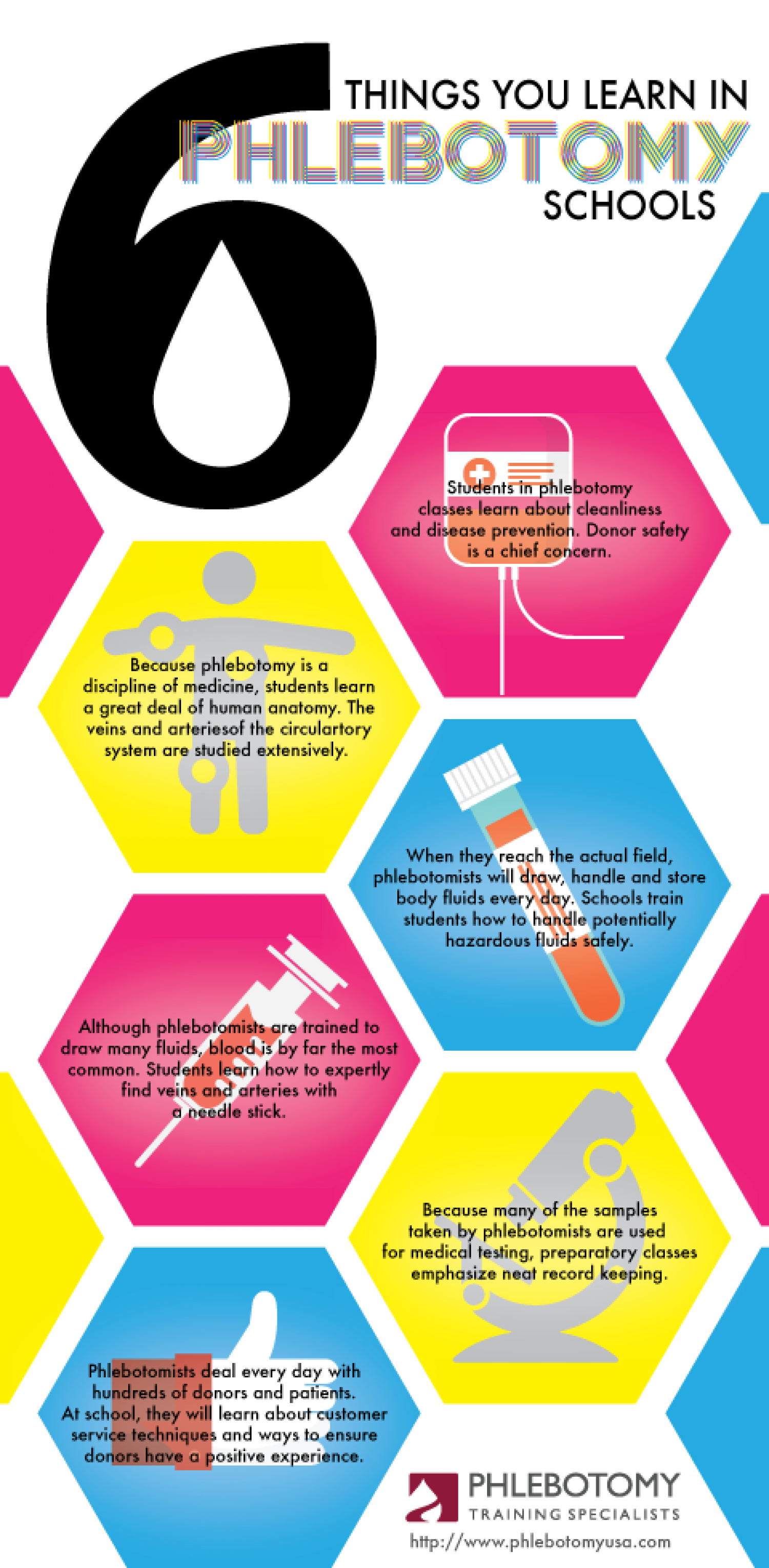 The 6 things you learn in phlebotomy schools visual the 6 things you learn in phlebotomy schools infographic xflitez Image collections