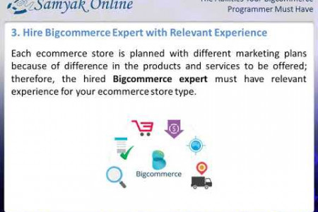 The Abilities Your Bigcommerce Programmer Must Have Infographic