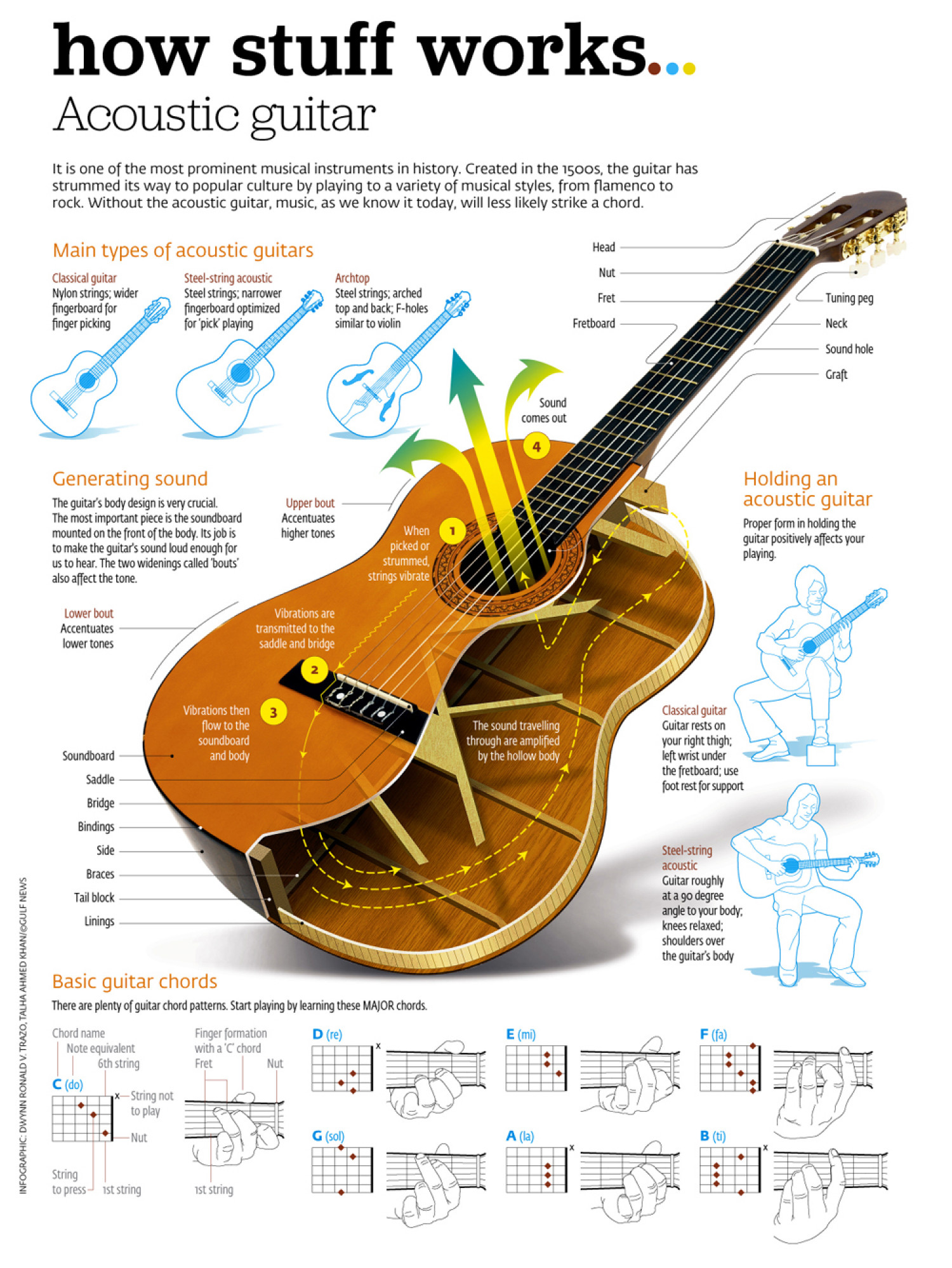 acoustic guitar infographic