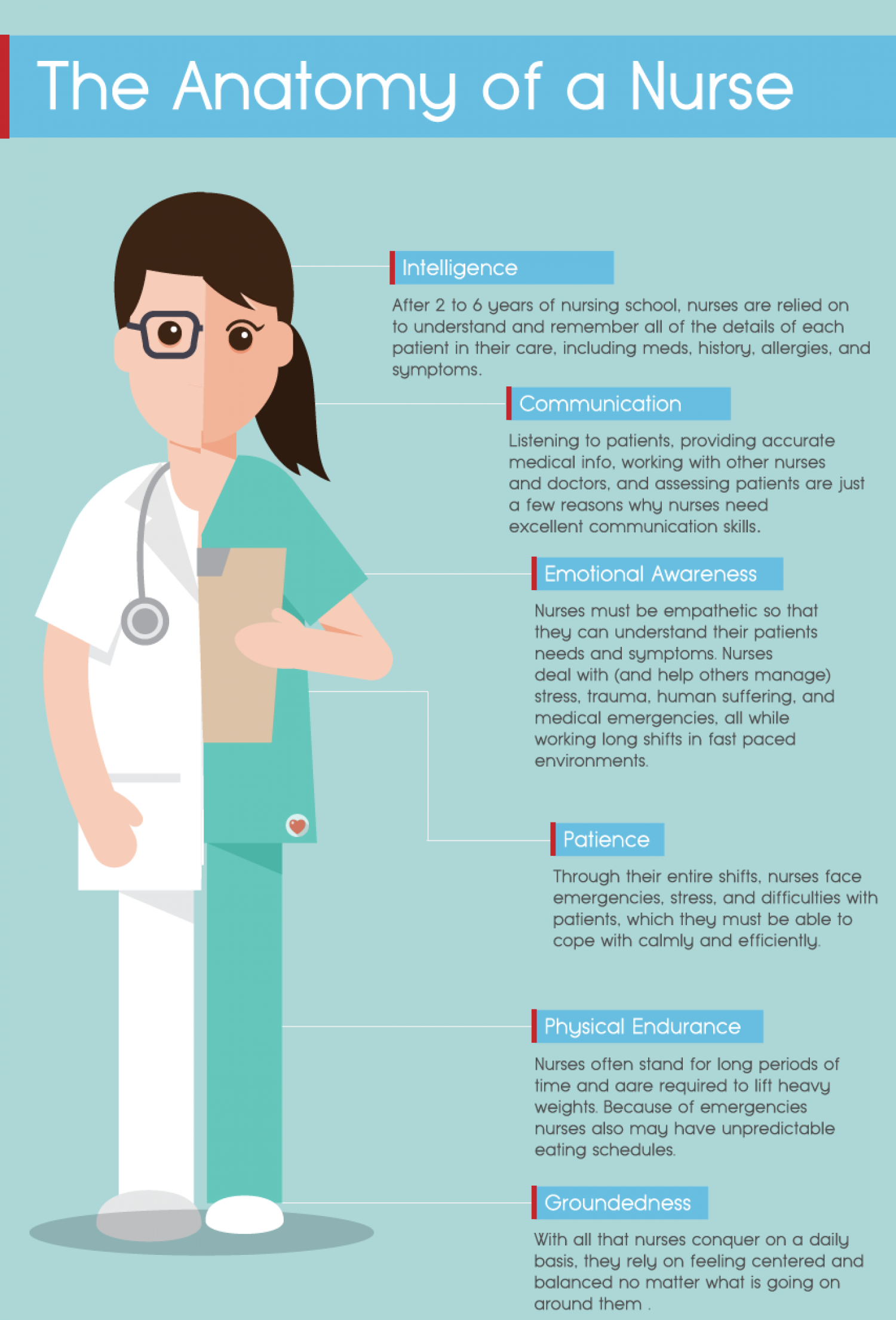 The Anatomy of a Nurse Infographic
