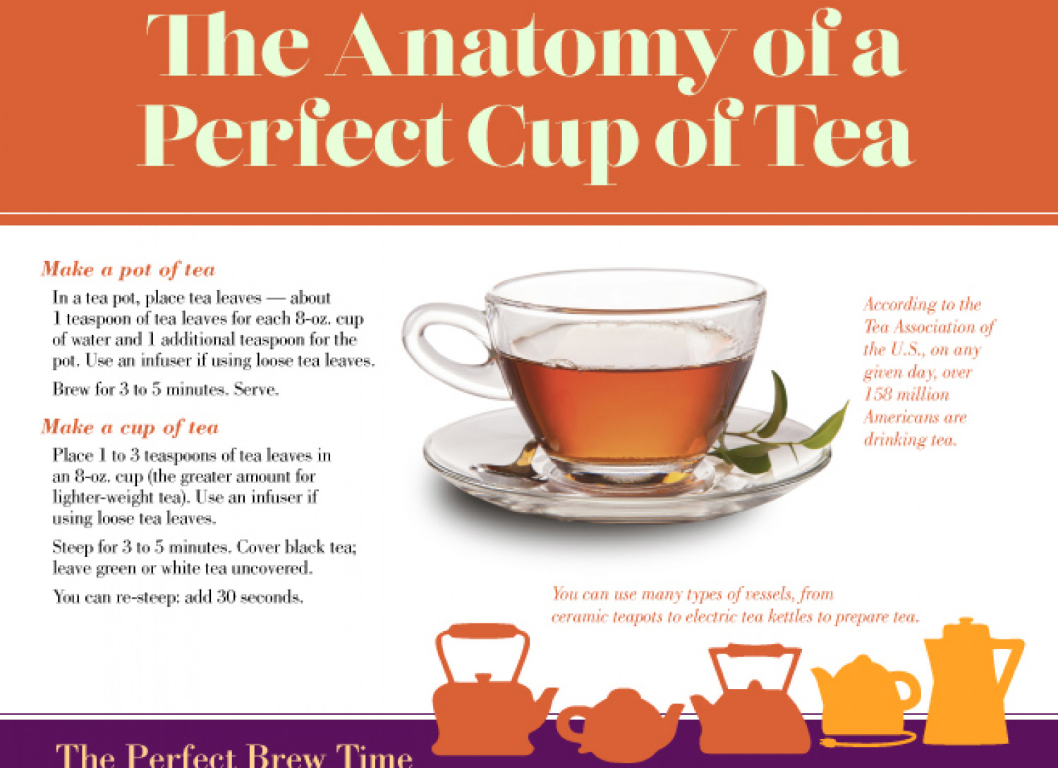 The Anatomy of a Perfect Cup of Tea Infographic