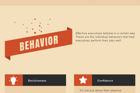 The Anatomy of an Effective Executive [Infographic] Infographic