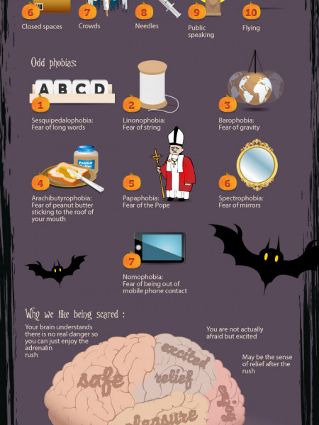 The Anatomy of Fear  Infographic