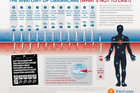 The Anatomy of Obamacare (What's Not to Like?) Infographic