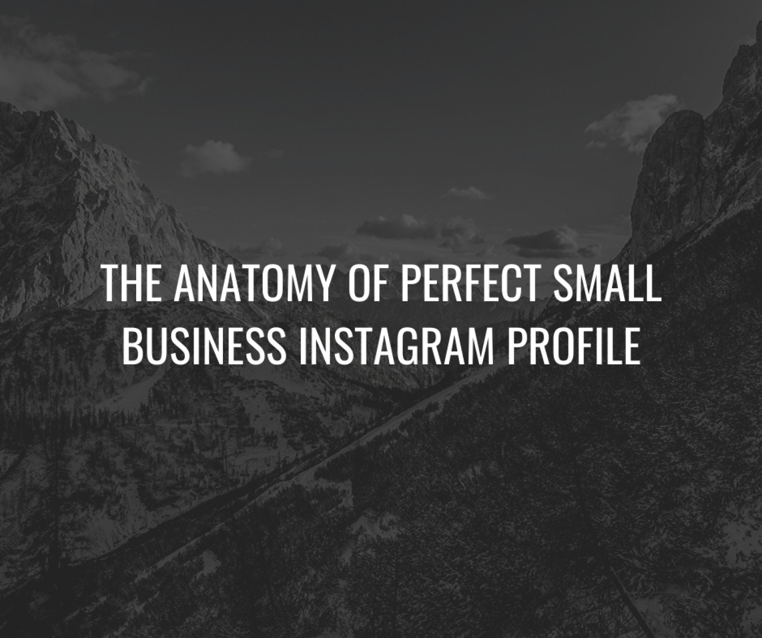 The Anatomy of Perfect Small Business Instagram Profile Infographic
