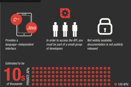 The API Revolution Infographic