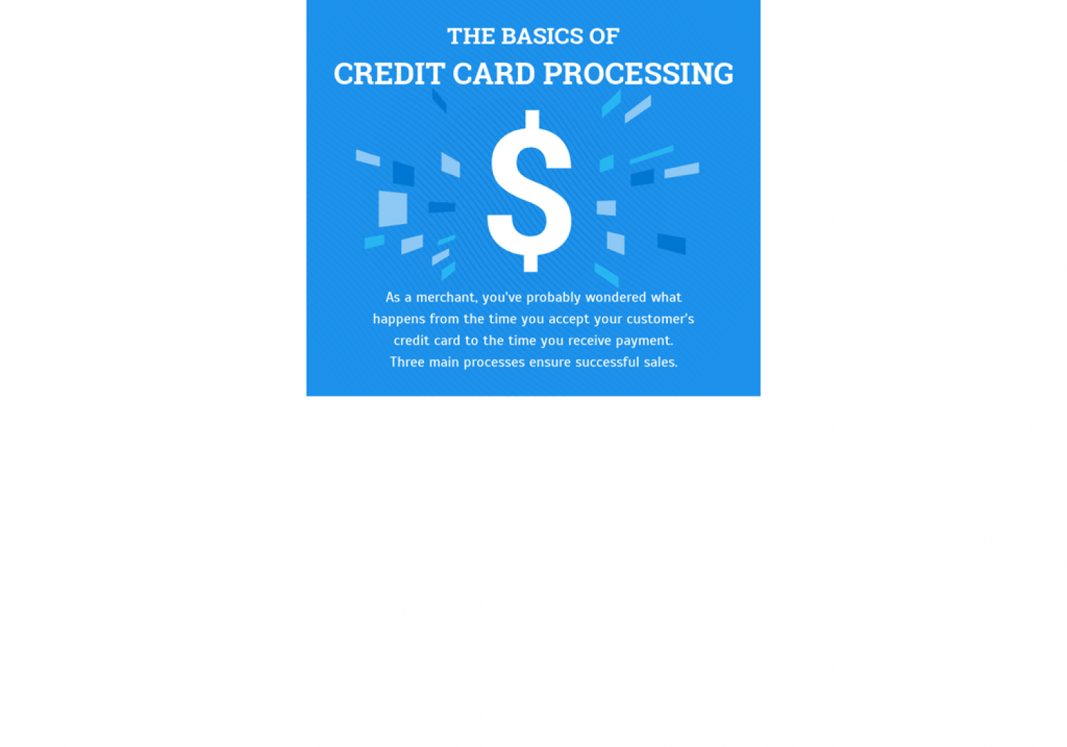 The Basics of Credit Card Processing Infographic