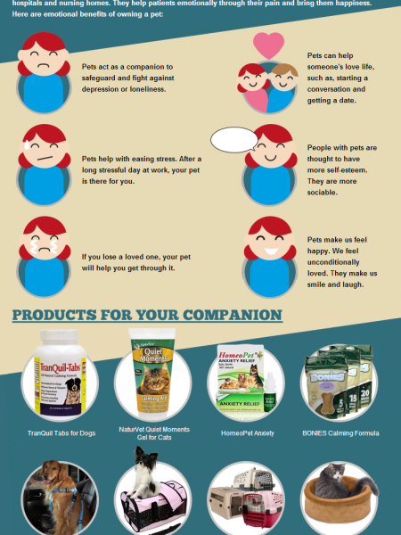 The Benefits of Owning a Pet Infographic Infographic