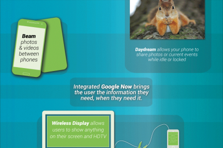 The Best Android Phones for 2013 Infographic