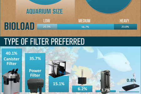 The Best Aquarium Filter (Chosen by our customers) Infographic