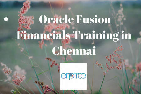 The Best Oracle Fusion Financials Training in Chennai Infographic