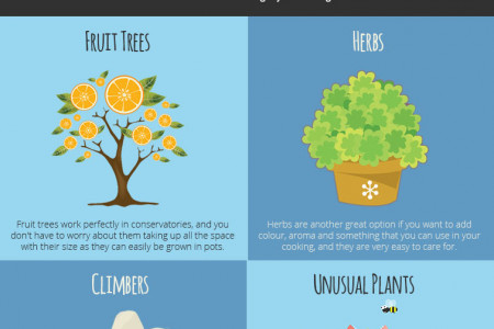 The Best Plants To Use In Your Conservatory Infographic