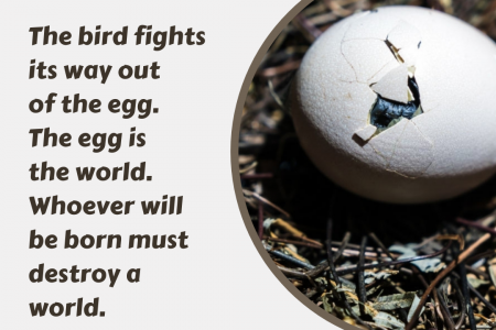 The bird fights its way out of the egg. Infographic