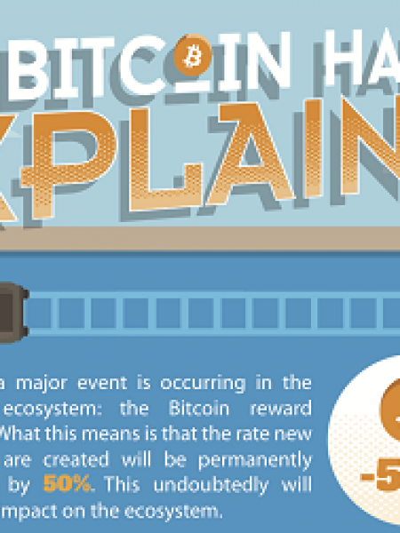 The Bitcoin Halving Explained Infographic