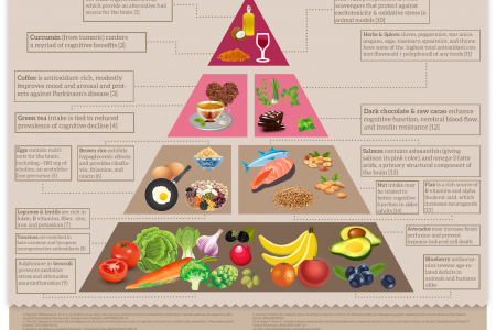 The Brain Food Pyramid Infographic