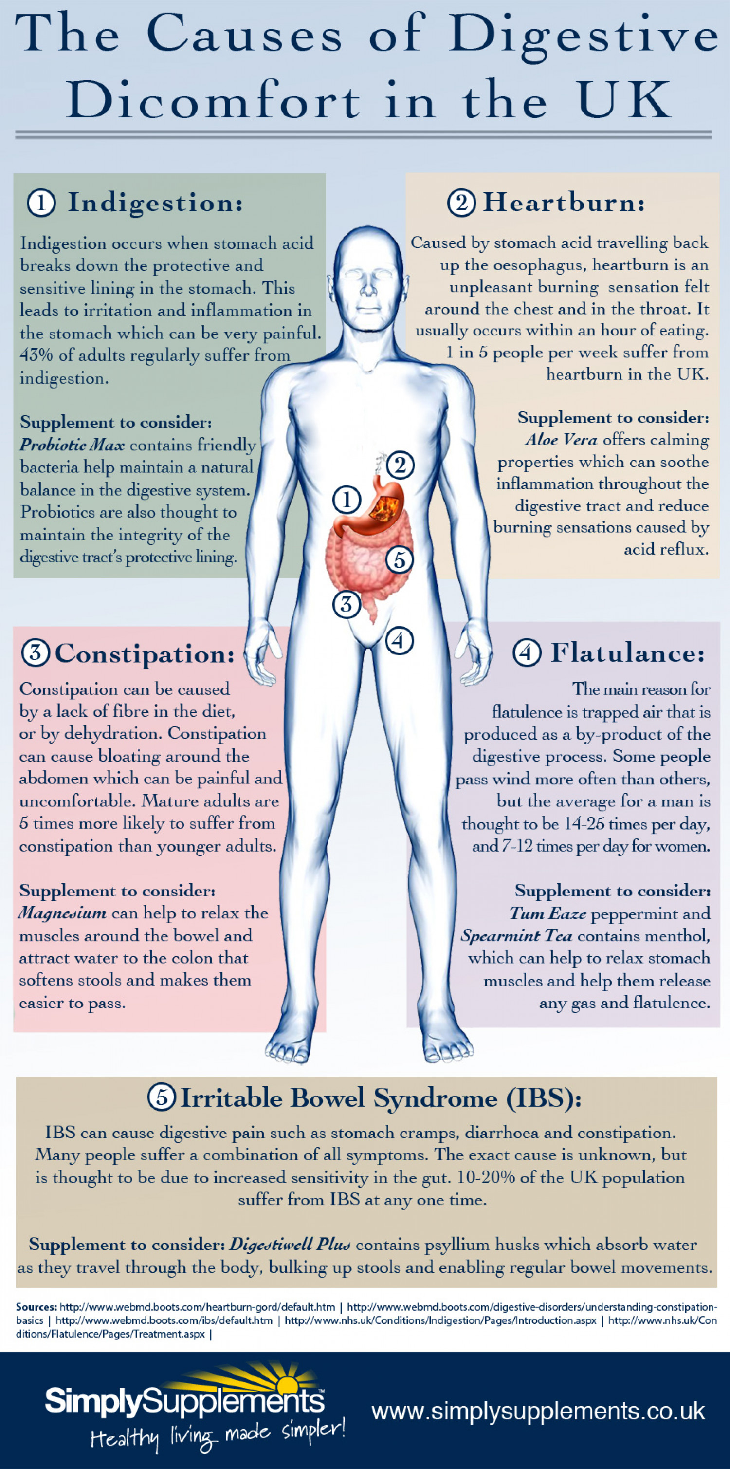 The Causes of Digestive Discomfort in the UK Infographic