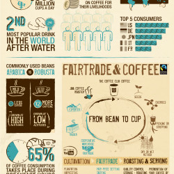 The Coffee Facts by The Coffee Club Belgium | Visual.ly
