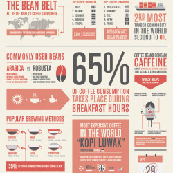 The Coffee Facts | Visual.ly