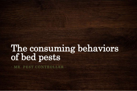 The consuming behaviors of bed pests Infographic