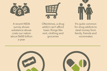 The Cost of Drug Abuse Infographic