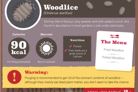 The Craziest Things You Can Eat Around the Home Infographic